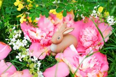 Deco Originale, Deco Floral, Creations, Easter, Christmas Ornaments, Diy, Holiday Decor, Plants, Inspiration