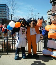 UT Martin's Captain Skyhawk and Tennessee's Smokey at the 2012 NCAA Tournament All in the Family Celebration for the Skyhawks and the Lady Vols