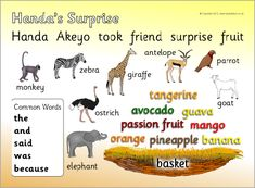 A printable word mat with words and pictures linked to the story of 'Handa's Surprise' by Eileen Brown. English Story, English Book, English Writing, Handas Surprise, Surprise Ideas, Free Teaching Resources, Teaching Ideas, Rumble In The Jungle, Dear Zoo