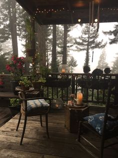 I know it's officially spring when my jasmine on the deck begins to bloom (my favorite scent ever!) and we can spend evenings with a glass of wine in the backyard while Ezra runs on the grass. We've been doing more hikes and walks lately in our...