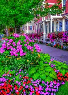 (¯`´¯) Bom dia! ¸¸`•.¸.•´ ⁀⋱‿✫  Hoje o dia amanheceu sorrindo, a esperança florida feito primavera... A fé renovando nossos sonhos, uma paz tão doce nos abraçando... É DEUS cuidando de nós mais uma vez! ⁀⋱‿✫  ✍ Daniela Lucas ¸¸`•.¸.•´ ⁀⋱‿✫ღ Feliz Domingo! ღ