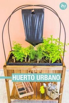 Huerto urbano con iglú de cultivo ➜ Monta un huerto urbano en casa e instálale un sistema de riego por goteo. #DIY #Jardinería #Handfie