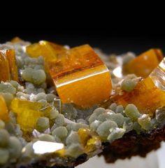 Wulfenite, Mimetite from Mina Oujela, Mapimi, Durango, Mexico [db_pics/pics/b734b.jpg]