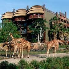 Orlando, FL:  Disney Animal Kingdom Lodge