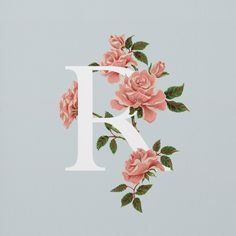 An Edible A-Z of Flowers by Charlotte Day