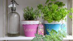 Es ist wieder Zeit für frische Kräuter in der Küche!  Und mit unseren Bastelideen bringen wir gleichzeitig frischen Wind in dein Zuhause :-) Planter Pots, Alcohol, Plants, Ad Home, Flowers, Crafting
