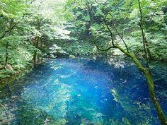 Shirakami sanchi, Aomori, Japan #worldheritage