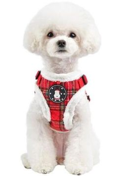 Blitzen Plaid Choke-Free Quilted Halter Harness - Color Holiday Red Plaid