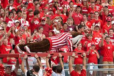 2012: If Bucky does push-ups for touchdowns, imagine what he'll do if he wins Mascot of the Year! Vote for him on www.capitalonebowl.com or tweet #CapitalOneBucky.