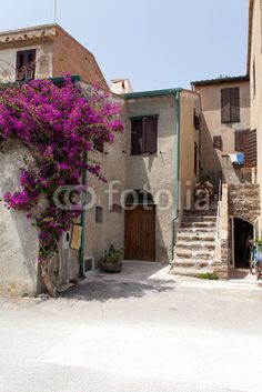 Stock photo available for sale at Fotolia: Old House At Capraia Island, Italy
