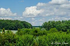 Bittenfeld  #Baum #Landschaft #Natur #RemsMurr