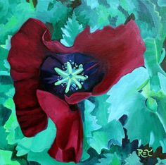 Oriental Poppy art by ReneeThompsonDesigns