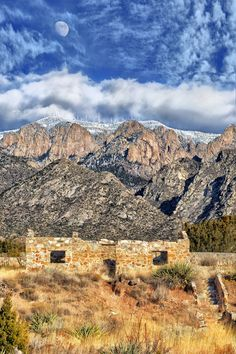 Aged and Ageless - Sandia Mountains, New Mexico