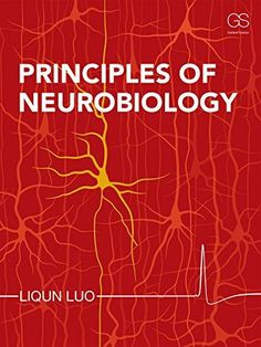 Test bank for Principles of Neurobiology Edition by Liqun Luo Molecular Genetics, Main Library, Writing Styles, English, Neuroscience, Social Science, Science And Nature, Book Publishing, Textbook