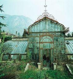 abandoned english greenhouse