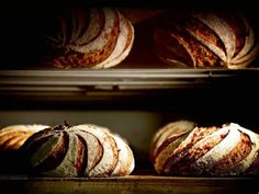 Sébastien Boudets Cranberry Brot (Küchenchef Sébastien Boudet) Bread Display, Brioche Recipe, Our Daily Bread, Bread And Pastries, How To Make Bread, Bread Making, Artisan Bread, Pain, Bread Recipes