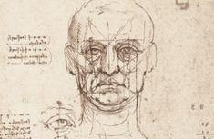 Rare Leonardo da Vinci Sketches on Display in Venice   Public Radio International