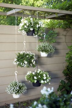 Ideas for the garden. I love this idea of hanging all white flowers in one area. Classic yet modern. Love!