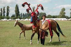 Akhal Teke in scythian trappings Horse Gear, Horse Tack, Baby Horses, Wild Horses, Most Beautiful Horses, Pretty Horses, Rare Horse Breeds, Akhal Teke Horses, Horse Costumes