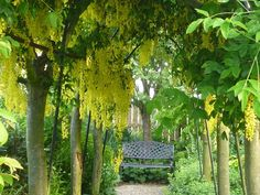 Our garden at Hunmanby Grange had a record number of visitors in 2015!