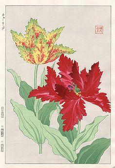 Fringed Tulip SKJ8 $125 Shodo Kawarazaki Spring Flower Woodblock Prints