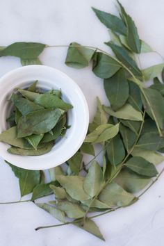 I Cooked with Curry Leaves for the First Time, and Here's What I Made — Ingredient Intelligence