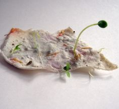 seed paper butterflies with vellum envelopes