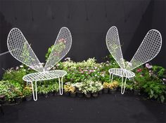butterfly vine chair at TIFF