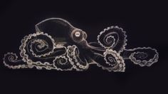 drawing on black paper with color pencil - Google Search