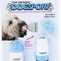 Dogsport Water Bottle For Dogs Petland Chicago Ridge Dogs Water Bottle Cavapoo Dogs