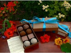 Moultonology Garden Bon Bons: Herb Seed Balls. Pin to WIN from @DailyGrommet: http://www.dailygrommet.com/products/pin-to-win