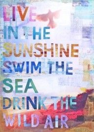 live in the sunshine swim the sea i love this so much how could it be