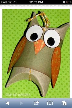 Cute toilet paper roll owl, DIY too!!!!