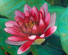 Acrylic painting of a lotus flower by Rachelle Hartley, posted on community.art-is-fun.com