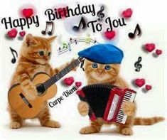 Beautiful cousins Myeloid and Trix 🎂🎉 Happy Birthday 🎶 Cat Birthday Wishes, Happy Birthday Animals, Happy Birthday Video, Happy Birthday Celebration, Happy Birthday Pictures, Birthday Songs, Happy Birthday Funny, Happy Birthday Messages, Happy Birthday Quotes