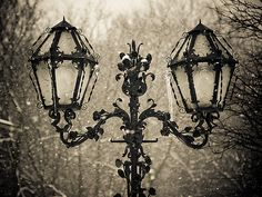 Winter Lamps            dreamingviolet:fog-city-maverick:huamao:kelley123:(via earlymornings)
