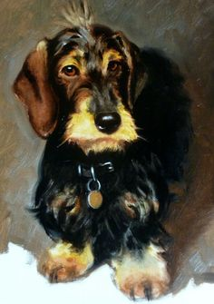 Dogs in Art at the StockBridge Gallery -   Wire haired Dachshund Painting by Hazel Morgan (http://www.dogsinart.com/wire-haired-dachshund-painting-by-hazel-morgan/)