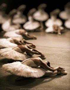 mood | swan lake | nikolai krusser photography