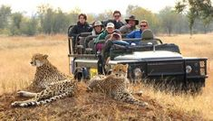 South African Safaris would be Amazing!