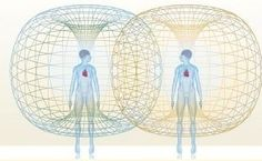 Human heart creates a tube torus field