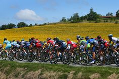 Le Tour de France: Stage 16 - Pictures - Zimbio