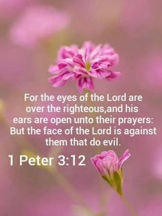 1 Peter (KJV) - For the eyes of the Lord are over the righteous, and His ears are open unto their prayers: but the face of the Lord is against them that do evil. Prayer Scriptures, Scripture Verses, Bible Verses Quotes, Faith Quotes, Praise God Quotes, Today's Prayer, King James Bible Verses, Prayer Board, Soli Deo Gloria