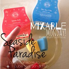 Monday's are sweet with a fun Scentsy recipe like this one! feel like you've escaped to a Seaside Paradise! Take 1 cube Kahika Hula + 1 cube Sea, Sun & Fun and add to your Scentsy warmer for a tropical and fun scent!