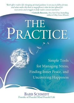 THE PRACTICE by Barb Schmidt Over 6 million used books most under $4! Buy more, spend less with www.thriftbooks.com