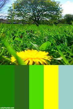 Spring+2014+Color+Scheme