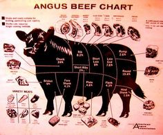 a cow the cow and poster on pinterest : cow butcher diagram - findchart.co