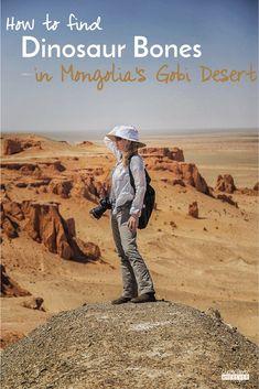Outdoor Travel: Dinosaur Bones | Gobi Desert | Mongolia | Travel to Mongolia | Visit Mongolia