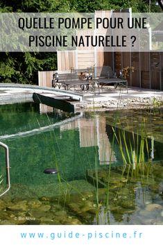 Habitats, Natural, Aquarium, Backyard, Spas, Gardens, Pools, Blue Prints, Building A Swimming Pool