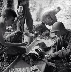 GI's treat a wounded war dog, 1944.