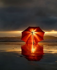 ♥ sunset through umbrella